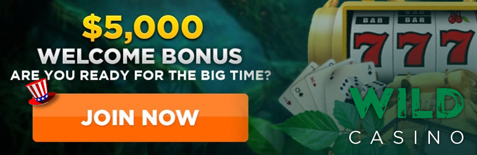 Wild Casino Review Banner